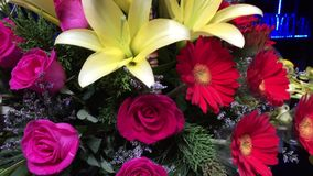 Fresh flowers stock video footage