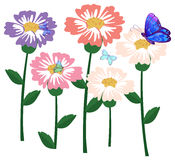 Fresh flowers with butterflies Royalty Free Stock Photos