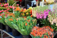 Fresh flowers at farmer market in France, Europe. Italian Spanish and French flowers. Street French market at Nice. Fresh food by local farmers. Fresh Royalty Free Stock Photos