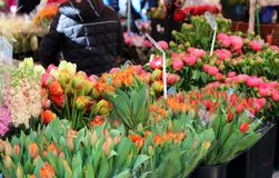 Fresh flowers at farmer market in France, Europe. Italian Spanish and French flowers. Street French market at Nice. Fresh food by local farmers. Fresh Stock Photography