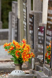 Fresh flowers on a grave Royalty Free Stock Image