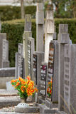 Fresh flowers on a grave Stock Photography