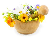 Fresh flowers in mortar  on white background. Fresh flowers in wooden mortar isolated on white background Stock Image