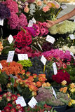 Fresh flowers at outdoor farmers market Royalty Free Stock Image