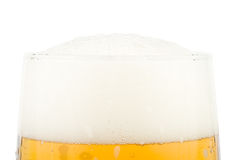 Fresh foamy beer Stock Photo