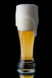 Fresh foamy beer Stock Image