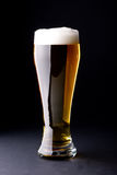 Fresh foamy beer Stock Photos