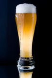 Fresh foamy beer Royalty Free Stock Images