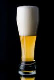 Fresh foamy beer Royalty Free Stock Photo
