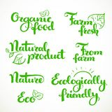 Fresh food and ecologically friendly calligraphic inscription Royalty Free Stock Photography