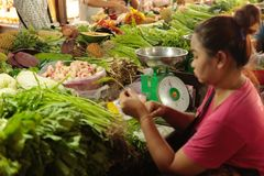 Fresh food market Cambodia. Fresh food vegetable fruit and other are sold at the Siem Reap market in Cambodia Stock Image