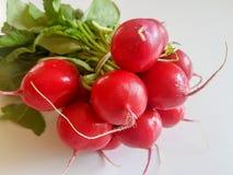 Fresh food red radish isolated on white background. Vegan vitamin Royalty Free Stock Photography