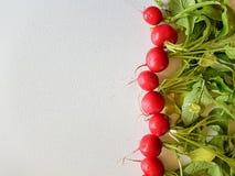 Fresh food red radish  on white background. Vegan vitamin Royalty Free Stock Photos
