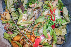 Fresh food scraps for composting Royalty Free Stock Images