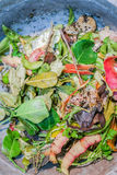 Fresh food scraps for composting Royalty Free Stock Photo