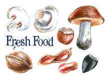 Fresh food vector logo design template. mushrooms Stock Photo