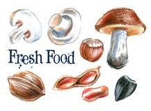 Fresh food vector logo design template. mushrooms Stock Photo