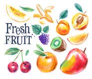 Fresh food vector logo design template. ripe fruit Stock Image