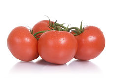 Fresh foods: tomatoes. Four vine-ripened tomatoes, white background stock images