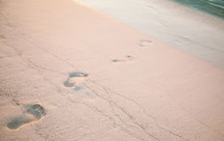 Fresh footsteps on the beach Royalty Free Stock Images