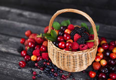 Fresh forest berries in basket on wooden background. Copy space. Fresh forest berries in basket on rustic wooden background. Copy space Stock Image