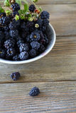 Fresh forest berries in a bowl Stock Images