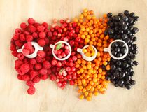 Fresh Forest Berries - colors of nature royalty free stock image