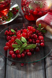 Fresh forest berries for flavored tea Royalty Free Stock Image