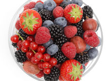 Fresh forest berries Stock Image