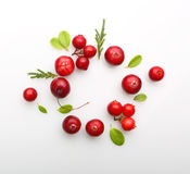 Fresh forest berry cranberry Stock Photo
