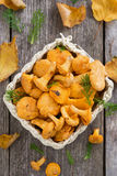 Fresh forest chanterelle mushrooms in a basket, top view Stock Photos