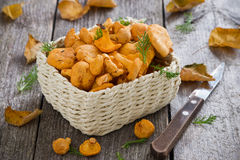Fresh forest chanterelle mushrooms in a basket on wooden table Royalty Free Stock Photography