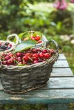 Fresh forest fruit on wood stock photography