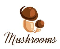 Fresh forest mushrooms Royalty Free Stock Images