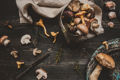 Fresh mixed forest mushrooms on the wooden black table Stock Photo