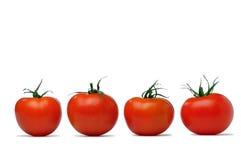 Fresh four tomato. Isolated on white background stock photos