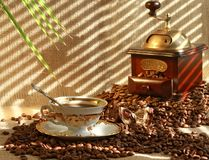 Fresh fragrant coffee Stock Photos