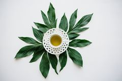 Fresh fragrant and healthy herbal or green tea in a mug. Tea time.  royalty free stock photos