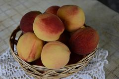 Fresh fragrant and sweet peaches in the basket royalty free stock photography