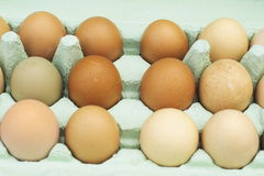 Fresh free-range chicken eggs Royalty Free Stock Photos