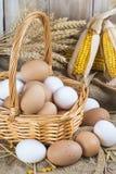 Fresh Free Range Eggs Stock Photos