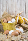 Fresh free range eggs Stock Photo
