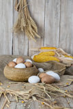 Fresh free range eggs Royalty Free Stock Photos