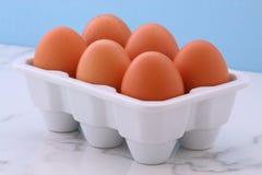Fresh free range eggs Stock Photo