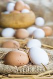 Fresh free range eggs Royalty Free Stock Images