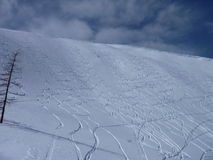 Fresh freeride skiing lines on a slope Royalty Free Stock Photography