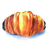 Fresh french croissant on white background Royalty Free Stock Images