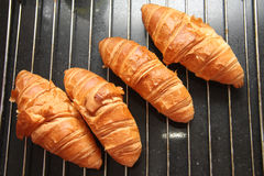Fresh French croissants Stock Image
