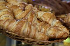 Fresh French croissants in a basket in a bakery. Tasty, crispy fresh french croissants in a basket in a bakery Stock Photography