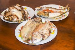 Fresh fried baked fish with scales and lemon in a plate Royalty Free Stock Photography